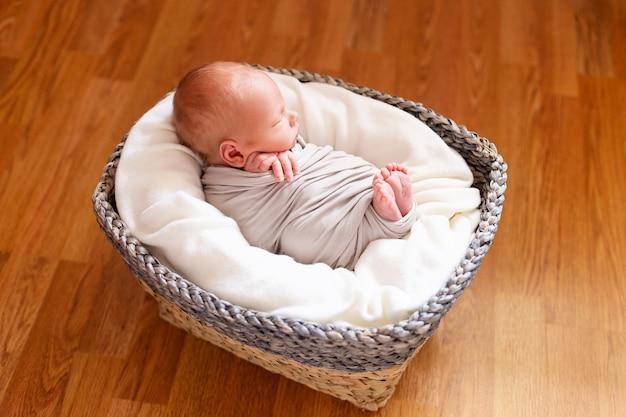 Canasta De Recien Nacido.Lindo Bebe Recien Nacido En La Canasta Gris Pequenas