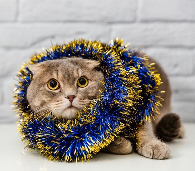 Lindo gato con decoración de árbol de navidad Foto gratis