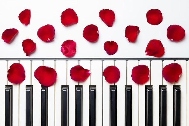 Llaves del piano con los pétalos de la flor de la rosa del rojo, visión aislada, superior, espacio de la copia. Foto Premium