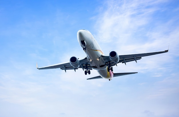 Lugar de vuelo en el cielo del atardecer Foto gratis