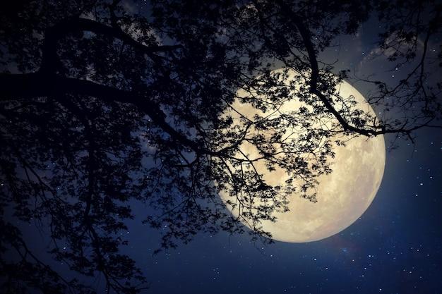 Luna De La Vía Láctea En Cielos Nocturnos, Luna Llena Y