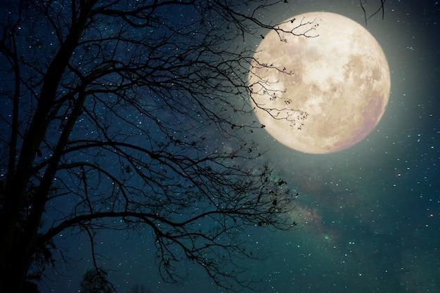 Luna de la vía láctea en cielos nocturnos, luna llena y viejo árbol - ilustraciones de estilo retro con tono de color vintage (elementos de esta imagen de luna proporcionada por la nasa) Foto Premium
