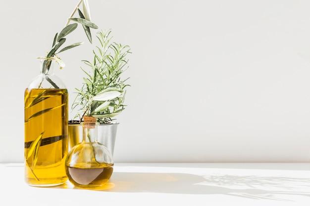 La luz del sol cae sobre botellas de aceite de oliva con romero en maceta Foto Premium