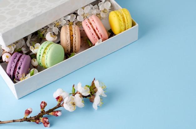 Macarrones frescos en una caja de regalo con flores de albaricoquero en azul pastel Foto Premium