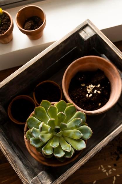 Maceta de jardinería casera con flores Foto gratis
