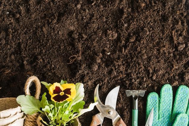 Macetas de turba; planta de pensamiento; herramientas de jardinería y guantes en el suelo Foto gratis