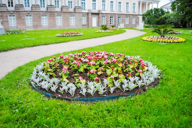 Macizo de flores de tsarskoye selo en san petersburgo Foto Premium