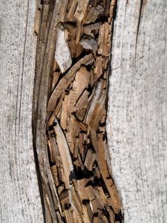 Tapa corrediza de caja de madera - spanishalibabacom