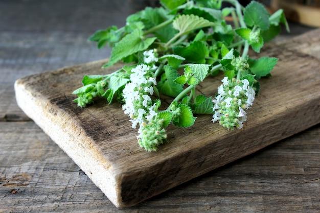 Madera de menta verde Foto Premium