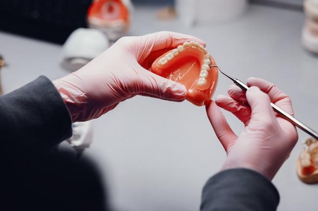 Mandíbula artificial en el consultorio del dentista. Foto gratis