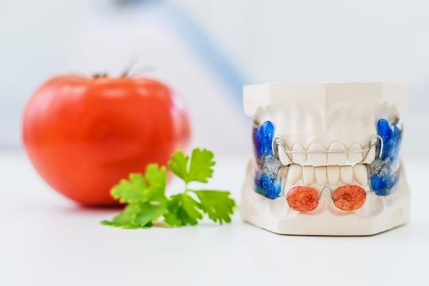 Las mandíbulas artificiales con una grapa se encuentran junto al tomate Foto Premium