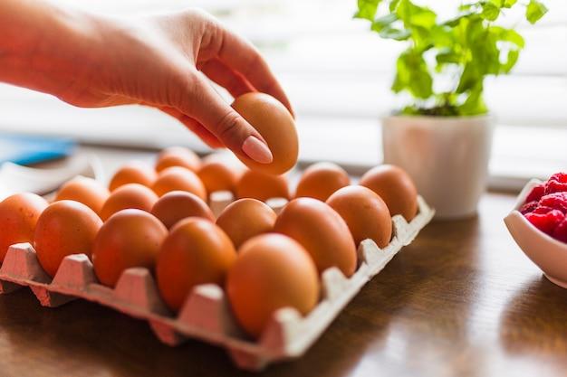 Mano de cultivo tomando huevo para pastelería Foto Premium