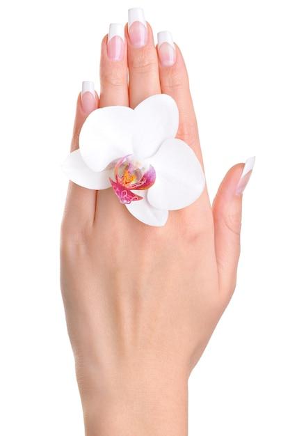 Una mano femenina con flor Foto gratis