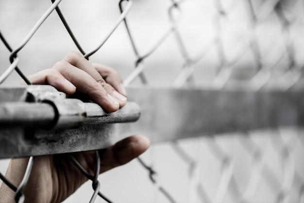 La mano de la mujer que sostiene la cerca del acoplamiento de cadena para recuerda concepto del día de los derechos humanos. Foto Premium