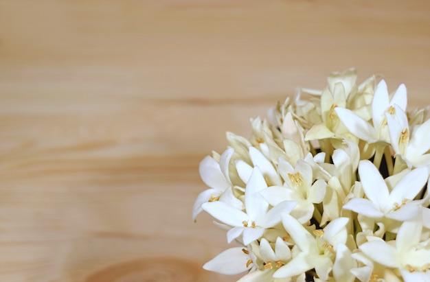 Manojo de hermosas flores blancas de millingtonia en una mesa de madera de color marrón claro Foto Premium