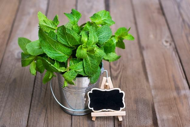Manojo de menta cruda fresca en cubo de metal sobre fondo de madera, enfoque selectivo Foto Premium