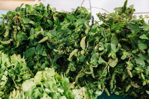 Manojo de menta verde fresca y perejil Foto gratis