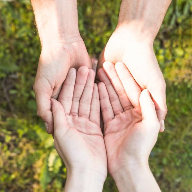 Manos manteniendo por encima de la hierba verde Foto gratis