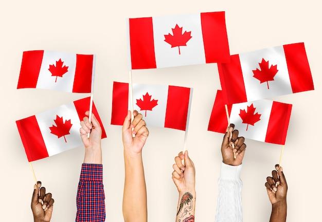 Manos ondeando banderas de canadá Foto gratis