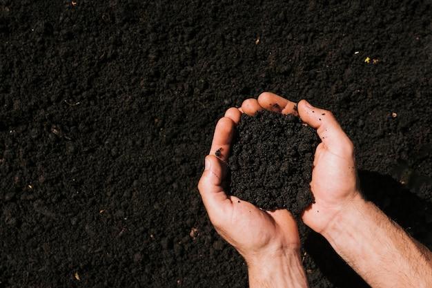 Las manos planas ponen tierra Foto gratis