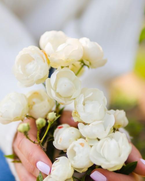 Manos sosteniendo rosas blancas florecientes Foto gratis