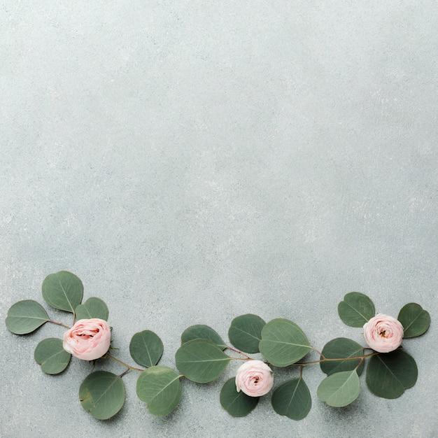 Marco de arreglo de ramas y rosas y espacio de copia Foto gratis