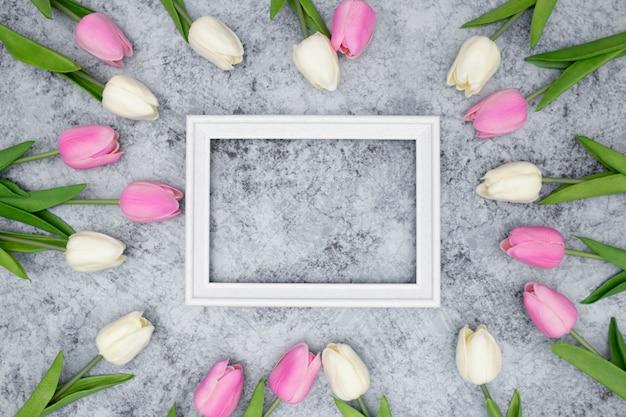 Marco blanco con hermosos tulipanes alrededor Foto gratis