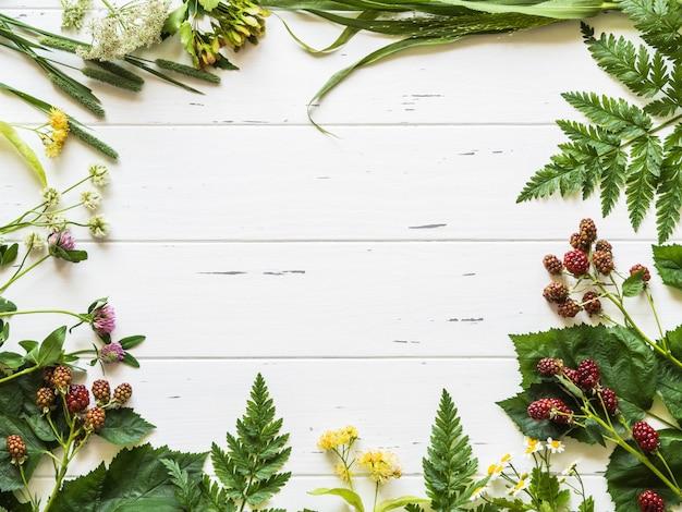 Marco botánico de zarzamora, manzanilla, flor de tilo, trébol sobre fondo de madera. composición plana de hierbas silvestres frescas y flores sobre fondo blanco rústico vista superior Foto Premium