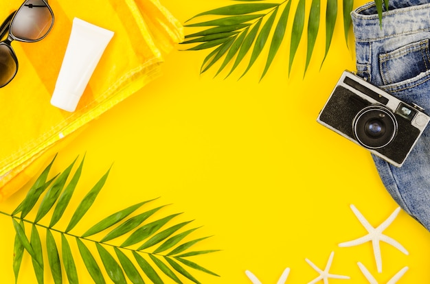 Marco de cámara, gafas de sol y hojas de palmera. Foto gratis