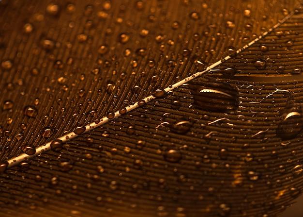 Marco completo de gotas de agua sobre la superficie de la pluma dorada Foto gratis