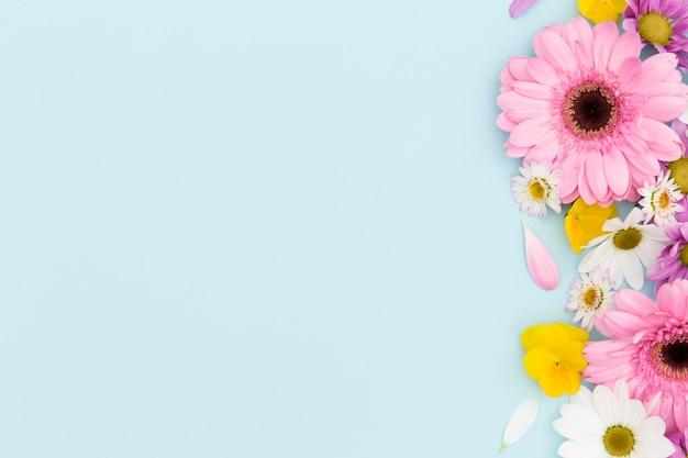 Marco floral plano laico con fondo azul Foto Premium