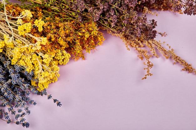 Marco de flores de hierbas secas Foto Premium