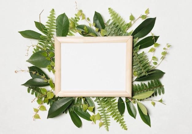Marco de fotos entre plantas verdes. Foto gratis