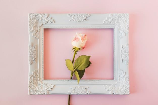 Marco de fotos vintage blanco y flor fresca. Foto gratis