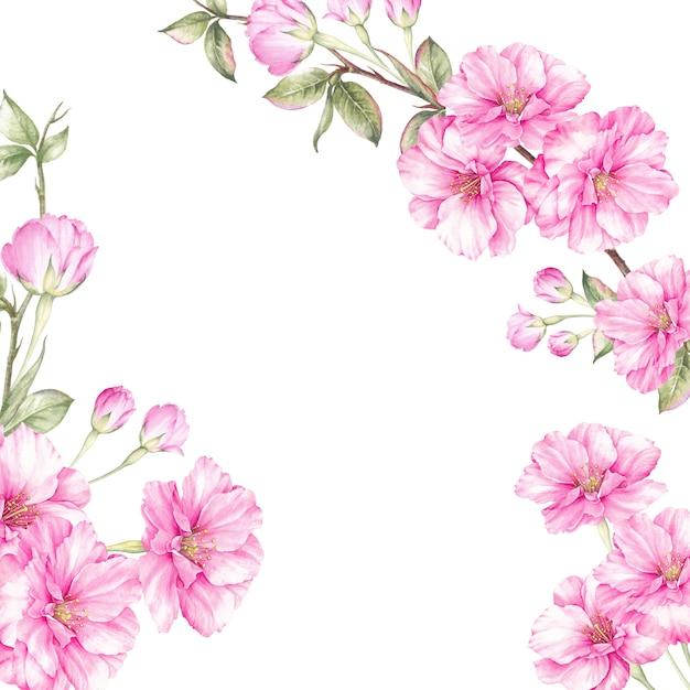 Marco de primavera de sakura deslumbrante. Foto Premium