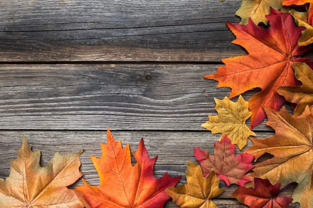 Marco de vista superior con hojas coloridas y espacio de copia Foto gratis