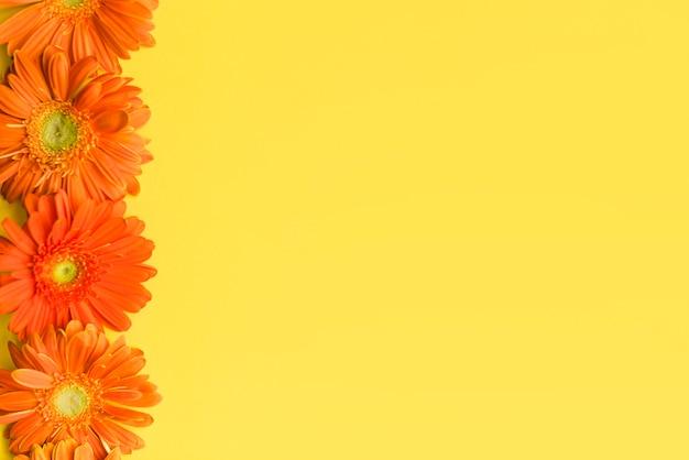Margaritas decorativas de colores sobre un fondo Foto gratis