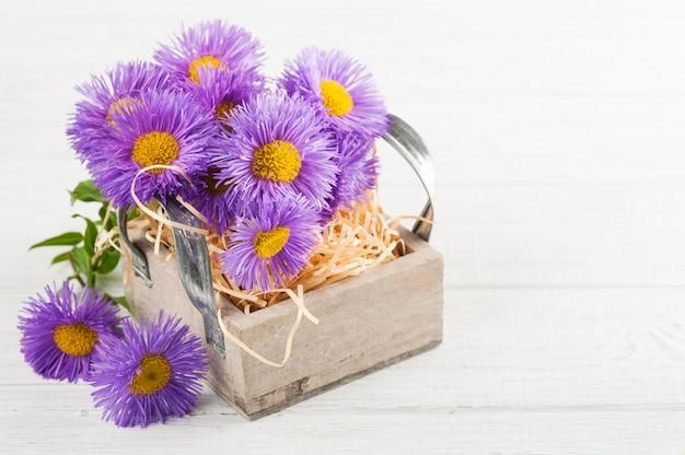 Margaritas moradas en caja vela en mesa blanca Foto Premium