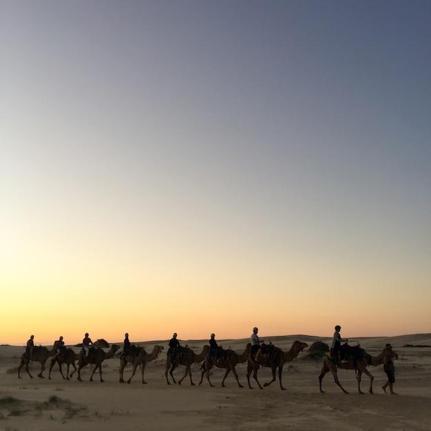 Marruecos cielo inconformista varias de edad Foto gratis
