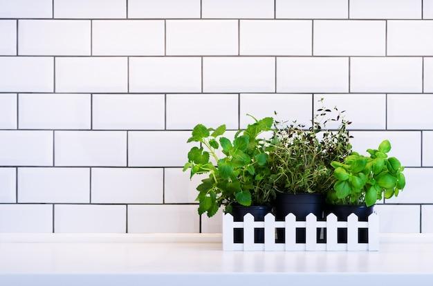Menta, tomillo, albahaca, perejil - hierbas aromáticas de la cocina en cajón de madera en la mesa de la cocina, baldosas de ladrillo. Foto Premium