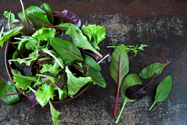 Mezcle las ensaladas para bebés en un tazón. concepto de alimentos saludables o dietéticos. superalimentos eco alimentos. comida de fitness. Foto Premium