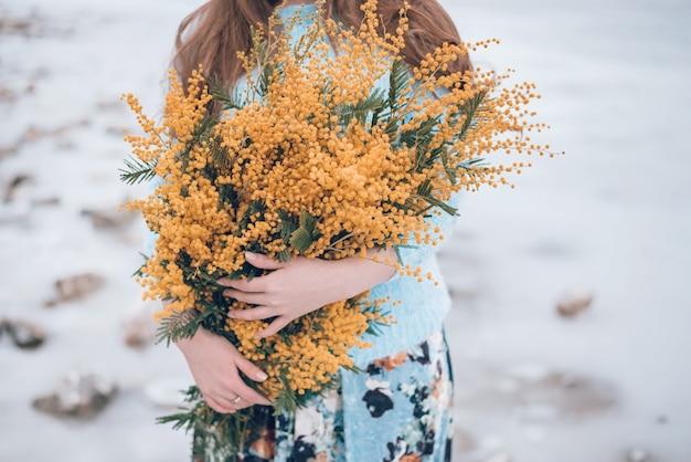 Mimosa flores amarillas en manos de mujer, recortadas. Foto Premium