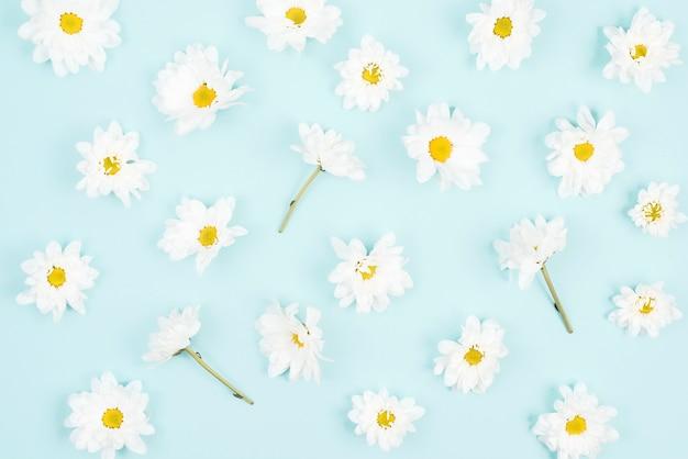 Modelo inconsútil de la flor blanca en fondo azul Foto gratis