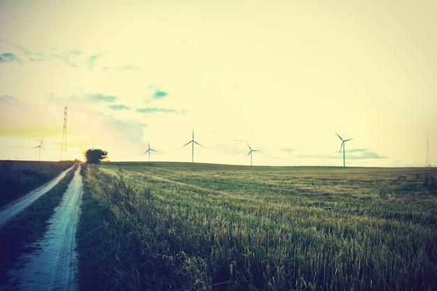 Molinos de viento en el campo. Foto gratis