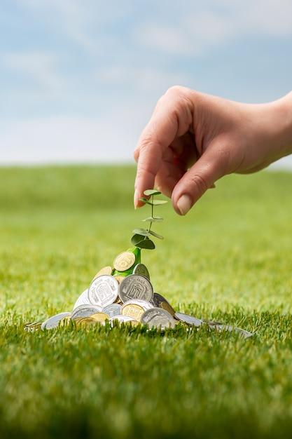Monedas en la hierba Foto gratis