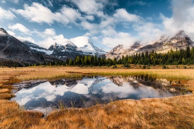 Monte assiniboine reflexión sobre estanque en pradera dorada en canadá Foto Premium