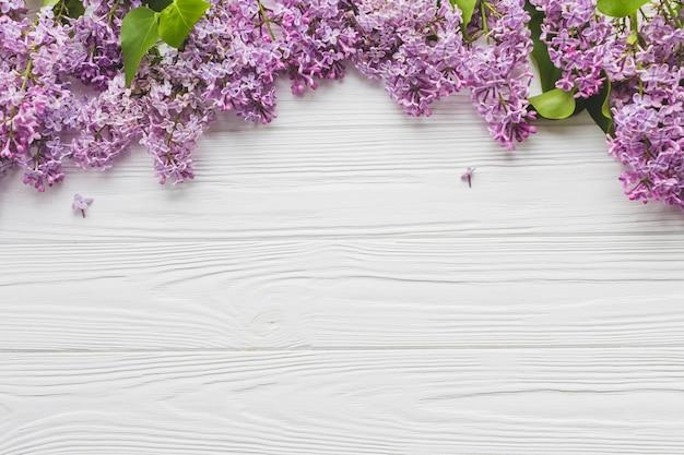 Montón de hermosa lila Foto gratis