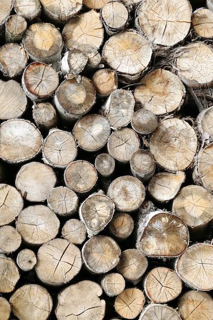 Mucha madera Foto gratis