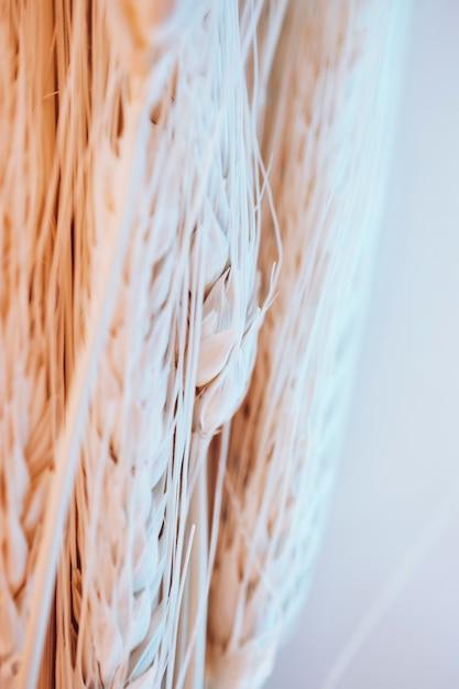 Muchas fibras y semillas de trigo. Foto gratis
