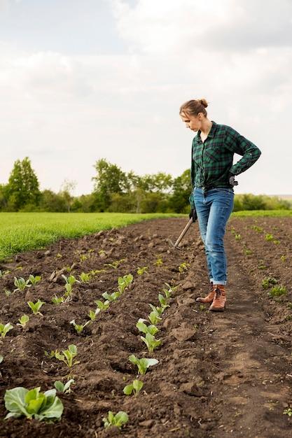 Mujer cosechando verduras Foto gratis